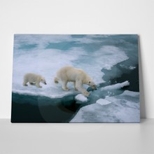 Mother polar bear and cub 155217797 a
