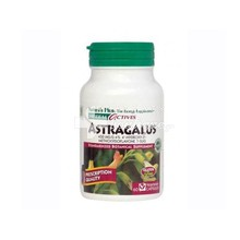 Nature's Plus, Astragalus 450 mg, 60vcaps