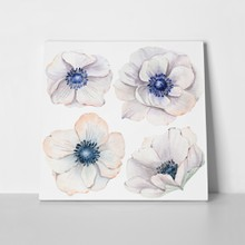 Anemones in vintage style 536595859 a