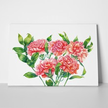Watercolor clove flowers 724937044 a