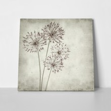 Textured old paper background allium 76077334 a