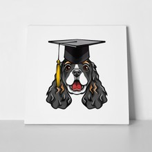 Cocker spaniel dog graduate 1082235047 a