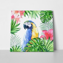 Frame tropical leaf parrot watercolor 624837755 a