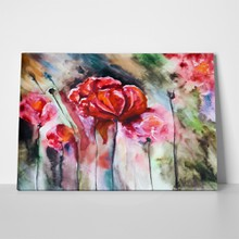 Colorful watercolor blossoming poppies 69336067 a