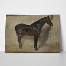 Study of a brown black horse tethered to a wall delacroix a
