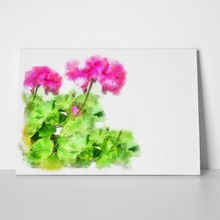 Geranium flowers art 1059837734 a