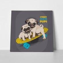 Pugs puppies on skateboard 529817851 a