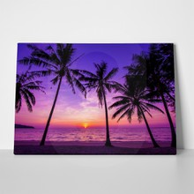 Purple sunset and palm trees 272237186 a