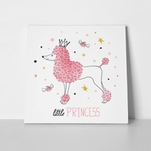 Little princess poodle dog 605396870 a