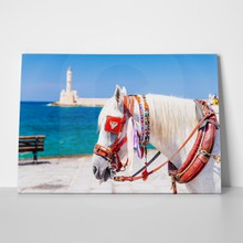 Horse in chania 547519057 a