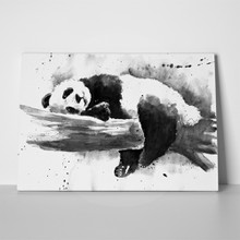 Panda painting sleeping 407945422 a