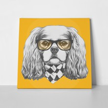 Portrait cavalier king charles spaniel glasses 330371210 a