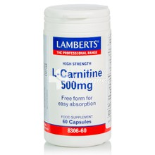 Lamberts L-CARNITINE 500mg (New Higher Strength), 60caps