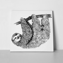 Hand drawn vintage illustration sloth 596285048 a