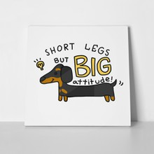 Short legs big attitude dachshund dog 723436549 a