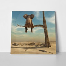 Elephant standing on thin branch 493803424 a