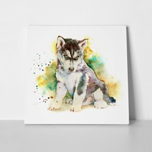 Watercolor portrait little puppy husky 610925063 a