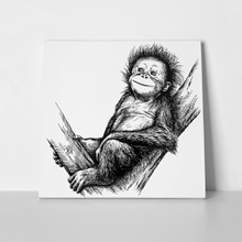 Black white engraved monkey art 769110526 a