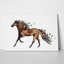 Watercolor illustration horse butterfly 630226193 a