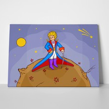 Little prince with smart suit 447879517 a