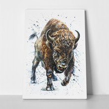 Watercolor buffalo bison animal 753586006 a