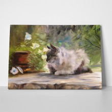 Cat and flowers nature oil painting 254413723 a