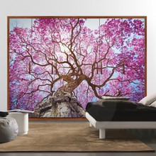Pink tree a