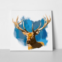 Deer head realistic hand drawn 244106101 a