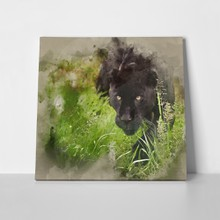 Watercolour painting image black jaguar 492964081 a