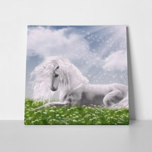 White unicorn sunlight 151778660 a