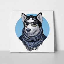 Husky wearing glasses color scarf 193887791 a