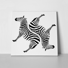Black zebras on white background 518890186 a
