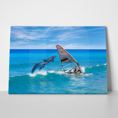 Windsurfer and dolphins 509152828 a