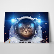Cat in outer space 308832962 a