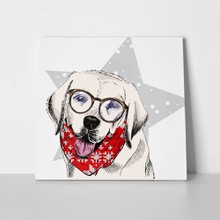 Labrador retriever dog wearing  glasses 736679371 a