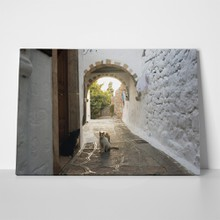 Cat in patmos 1129543007 a