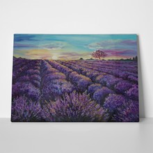 Lavender field at dawn 687257734 a