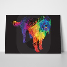 Colorful labradoodle dog 553674322 a