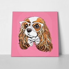 Portrait cavalier king charles spaniel glasses 668283895 a