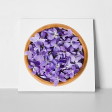 Violets in wooden bowl 613458329 a