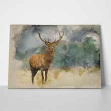 Majestic watercolor deer 628586405 a