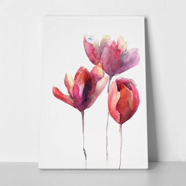 Tulips flowers watercolor 107864345 a