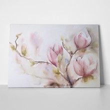 Watercolor magnolia flowers 47925643 a