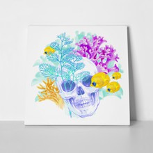 Coral skull 270153767 a