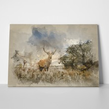Watercolour painting beautiful red deer 632637686 a