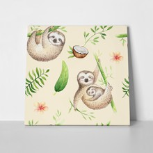 Baby animals sloth tropical 662499436 a