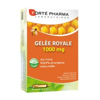 FORTE PHARMA GELEE ROYALE 1000MG 10ML X 20AMP