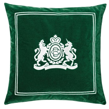 Velvet Pillow in Green Colour