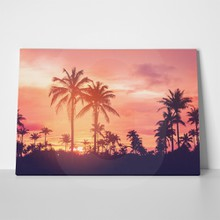 Vintage palm trees 643003627 a