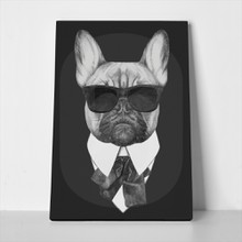 French bulldog dog in black 267625982 a